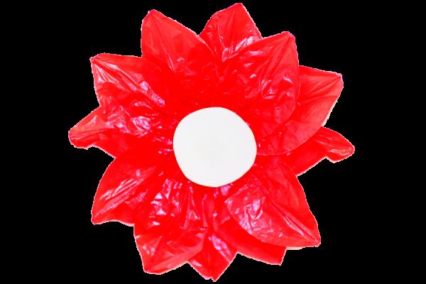 Kinderarzt in Volksdorf Wiegand Dressler Blume 600